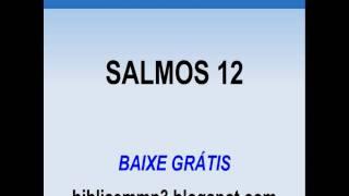 BÍBLIA FALADA - SALMOS 12