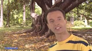 Emanuel - Vamos a Elas (Vídeo Oficial) (1997)