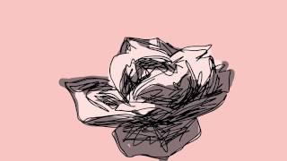 RotoRose [rotoscope time-lapse of rose blooming]