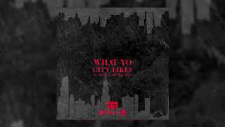 "Lil Durk x Tee Grizzley  ""What Yo City Like?"" (Official Audio)"