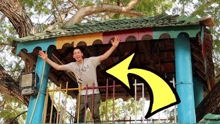 AWESOME TREEHOUSE FORT!