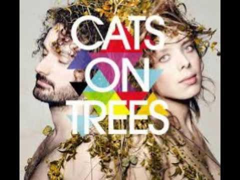 cats-on-trees-burn-funnydd