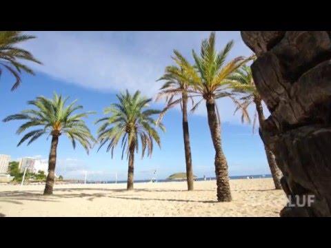 Palma Nova & Magaluf - en komplett ferie!