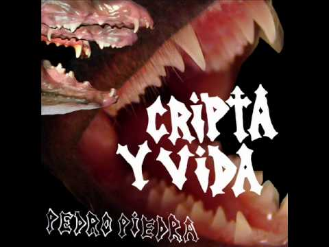 pedropiedra-zorzal-cripta-y-vida-rumberochile