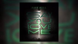Dave Kull - Say You Love Me [official audio]
