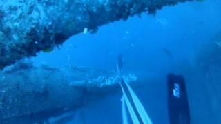 Louisiana Spearfishing Warsaw Grouper