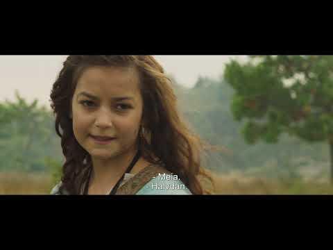 Halvdan Viking - Trailer