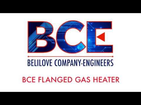 BCE Flanged Gas Heater