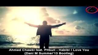 Ahmed Chawki feat. Pitbull - Habibi I Love You (Dani M Summer'13 Bootleg)