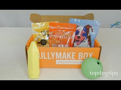 August 2019 Bullymake Box Unboxing