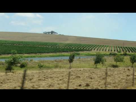Durbanville, South Africa, part 2