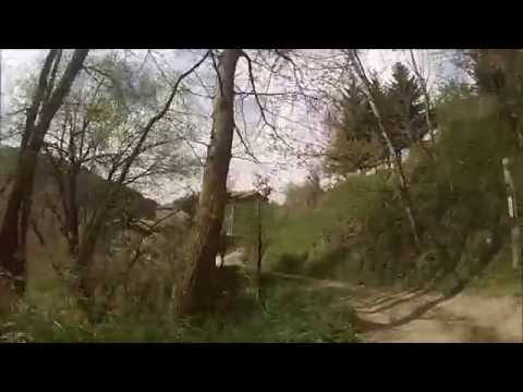 moll trail