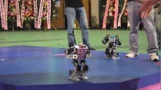 Korea Robot Fighting Festival 2012 Final Battle - COOL!!!