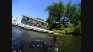 Some things to do in Sodus Bay