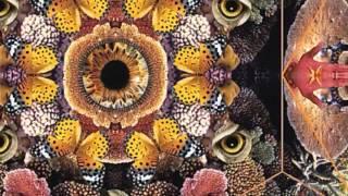White Bone Rattle - Creature of Curiosity - Album Out Nov 12