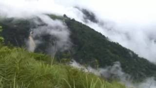 Relaxing Music Therapy   Relaxing Piano Rain Music    Nature Scenes  for sleep