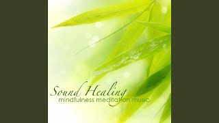 Mindfulness Meditation Music (Piano Music for Meditation)