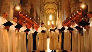Gregorian Chant - Michelle