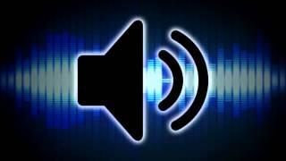 Duck Quack Sound Effect