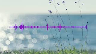 Lenno feat Scavenger hunt - Chase the sun (elektronomia remix)