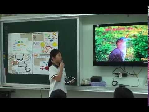 探索黑冠麻鷺 - YouTube