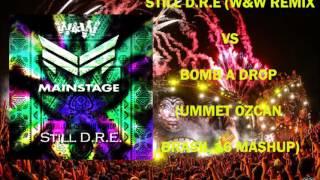STILL D.R.E (W&W REMIX) VS BOMB A DROP (UMMET OZCAN TOMORROWLAND BRASIL 16 MASHUP)