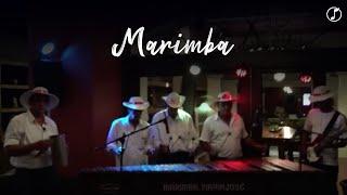 Marimba | Acústica Lounge