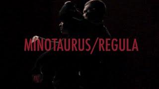 REGULA / MINOTAURUS Teaser