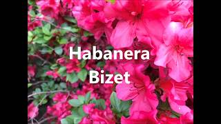 Georges Bizet - Habanera from Carmen