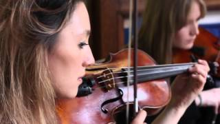 SchulKid - Love Like This feat. Tara Priya (Riot Quartet Live Performance)