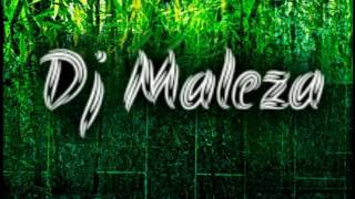 Dj Maleza- biz