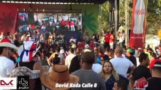 David Kada A lo loco en vivo