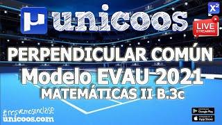 Imagen en miniatura para LIVE!!! Modelo EvAU 2021 - Matemáticas II 06 - Ejercicio B.3c - Perpendicular común