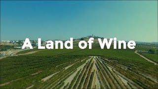 A Taste of Portugal | A Land of Wine