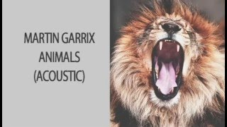 Martin Garrix - Animals (Acoustic Version)