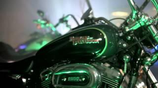 HDMV - Full Length Music Video - Lion and Lambs
