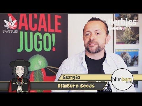 BlimBurn Seeds @ Spannabis 2014 Barcelona