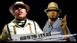 Bolado feat Temor -  A mi me gusta