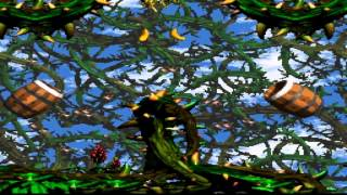 Donkey Kong Country 2 Diddy's Kong Quest Bramble Blast