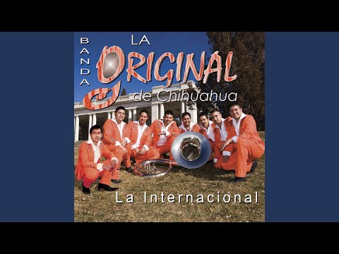 amores finjidos de original de chihuahua Letra y Video