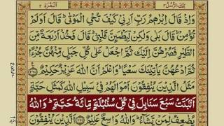 Quran Para 3 with Urdu Translation | Recitation : Mishary Rashid Alafasy width=