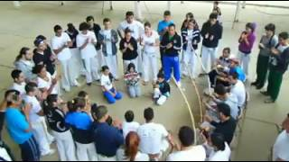 roda de capoeira en algarrobo capoeira sul da bahia