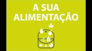 Dia Mundial da Saúde 2010 - Associação Portuguesa dos Nutricionistas