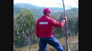 RECRUTAMENTO BOMBEIROS DE VALBOM_0001.wmv