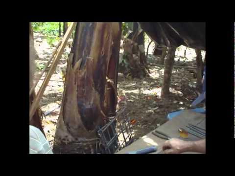 Nicaragua Trip 2011 – 16