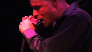 【クロマチックハーモニカ】グレゴアマレモデル デモ G-48W Live Video  -鈴木楽器製作所-
