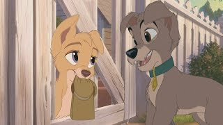 Lady and the Tramp 2 - Scamp meets Angel (HD)