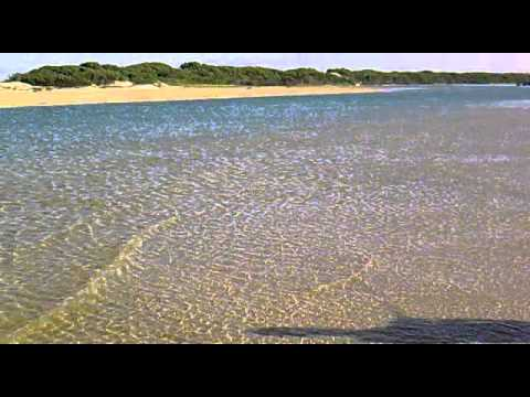 Hold My Rod – Bartail Flatheads River Gurnards – Fishing Kromme River St Francis Bay South Africa