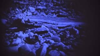 Jaloo- I Follow Rivers (Lykke Li Cover)