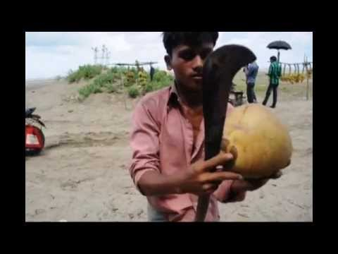 The Longest Beach, Cox`s bazar, Nikon D5000, video quality.